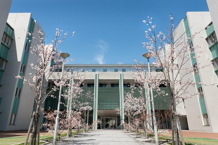 大学 高知 県立